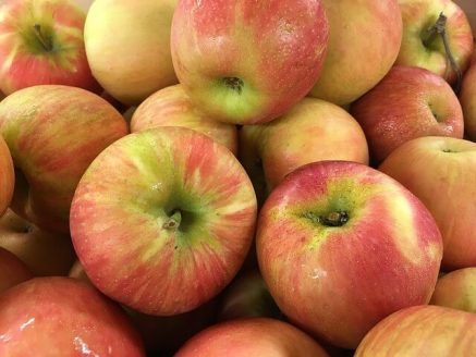 best-apples-for-juicing